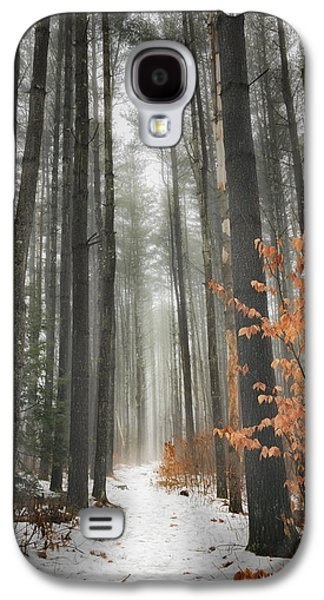 Woodlands Scene Galaxy S4 Cases - A Winters Path Galaxy S4 Case by Bill  Wakeley