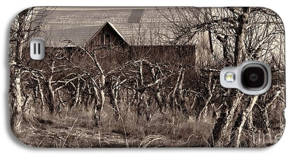 Wild Orchards Galaxy S4 Cases - Abandoned Apple Orchard Galaxy S4 Case by Henry Kowalski