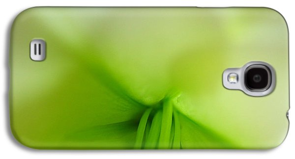 Abstract Forms Photographs Galaxy S4 Cases - Abstract Forms in Nature Galaxy S4 Case by Juergen Roth