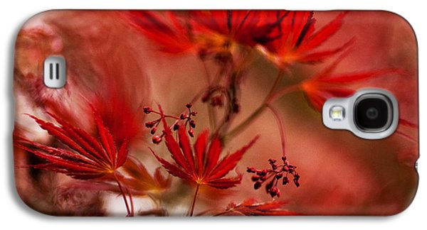 Abstract Nature Galaxy S4 Cases - Acer Storm Galaxy S4 Case by Mike Reid
