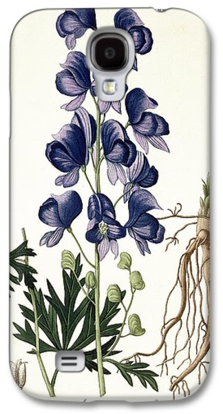 Flora Drawings Galaxy S4 Cases - Aconitum Napellus Galaxy S4 Case by LFJ Hoquart