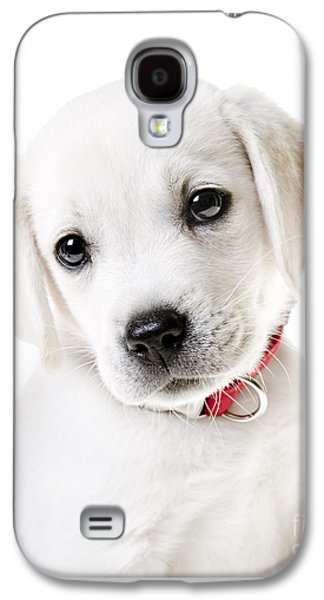Puppy Galaxy S4 Cases - Adorable Yellow Lab Puppy Galaxy S4 Case by Diane Diederich