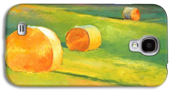 Advance Mills Hall Bales Galaxy S4 Case by Catherine Twomey