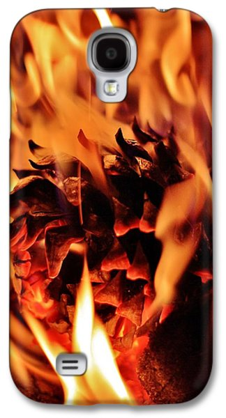 Pine Cones Photographs Galaxy S4 Cases - Aflame Galaxy S4 Case by Benjamin Yeager