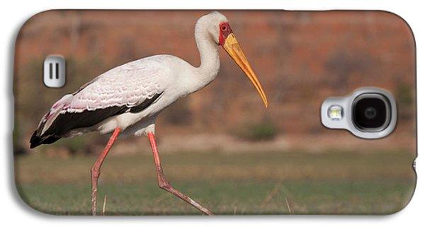 Africa, Botswana, Chobe National Park Galaxy S4 Case by Jaynes Gallery