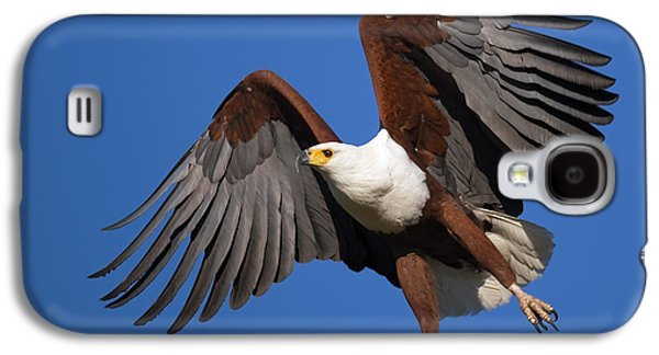 African Fish Eagle Galaxy S4 Case by Johan Swanepoel