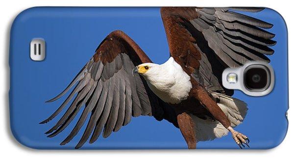 Raptors Galaxy S4 Cases - African Fish Eagle Galaxy S4 Case by Johan Swanepoel
