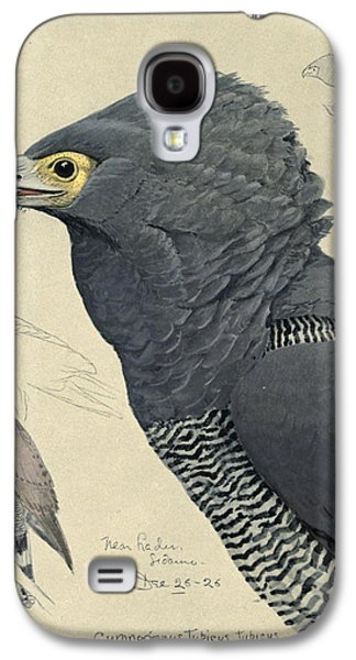 1874 Galaxy S4 Cases - African Harrier-Hawk Galaxy S4 Case by Louis Agassiz Fuertes