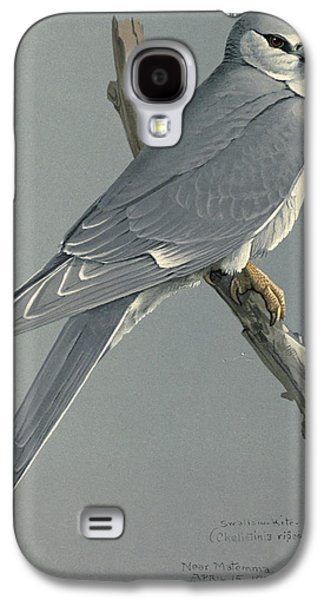 1874 Galaxy S4 Cases - African Snow Tailed Kite Galaxy S4 Case by Louis Agassiz Fuertes