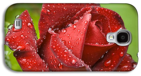 Garden Images Galaxy S4 Cases - After The Rain Galaxy S4 Case by Frank Tschakert