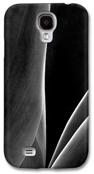 Abstract Digital Photographs Galaxy S4 Cases - Agave Galaxy S4 Case by Ben and Raisa Gertsberg