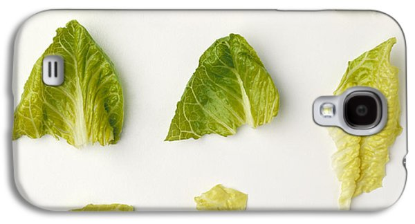 Romaine Galaxy S4 Cases - Agriculture - Closeup Of Chopped Galaxy S4 Case by Ed Young