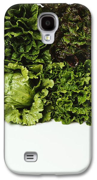 Romaine Galaxy S4 Cases - Agriculture - Heads Of Romaine, Red Galaxy S4 Case by Ed Young