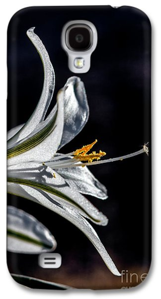 Haybale Galaxy S4 Cases - Ajo Lily Close Up Galaxy S4 Case by Robert Bales