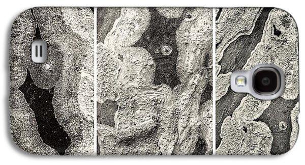 Alga Galaxy S4 Cases - Alien Triptych Landscape BW Galaxy S4 Case by Rudy Umans