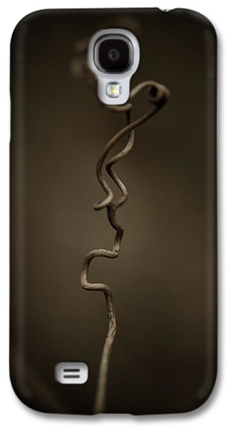 Vines Galaxy S4 Cases - All The In-betweens Galaxy S4 Case by Shane Holsclaw