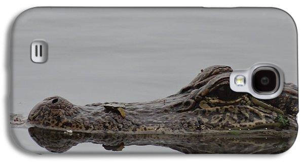 Alligator Eyes Galaxy S4 Case by Dan Sproul