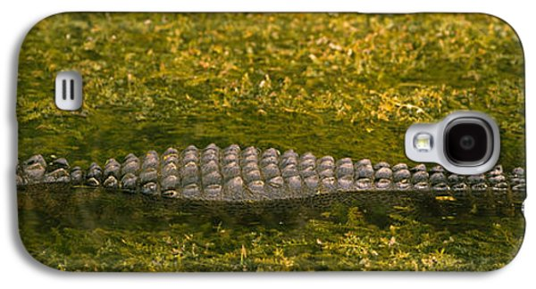 Alligator Flowing In A Canal, Big Galaxy S4 Case by Panoramic Images