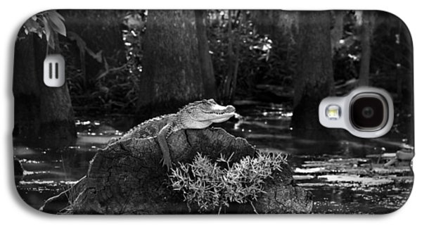 Louisiana Photographs Galaxy S4 Cases - Alligator in the Louisiana Bayou Galaxy S4 Case by Mountain Dreams