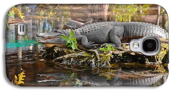 Alligator Mississippiensis Galaxy S4 Case by Christine Till