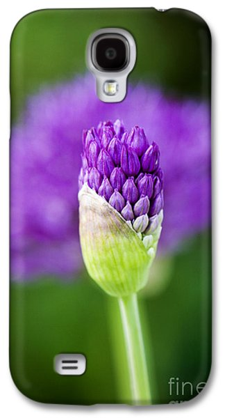 Photographs Galaxy S4 Cases - Allium hollandicum Purple Sensation Galaxy S4 Case by Tim Gainey