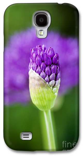Blooms Galaxy S4 Cases - Allium hollandicum Purple Sensation Galaxy S4 Case by Tim Gainey