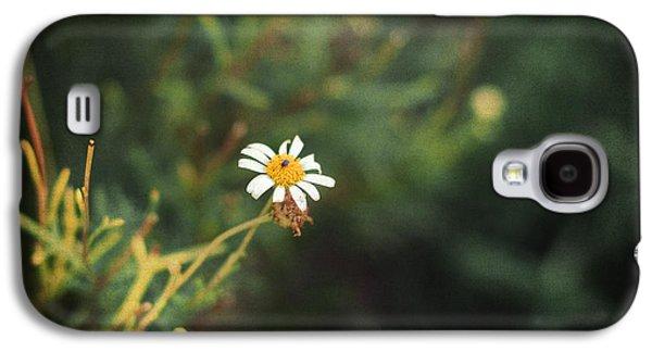 Ants Galaxy S4 Cases - Alone Galaxy S4 Case by Taylan Soyturk