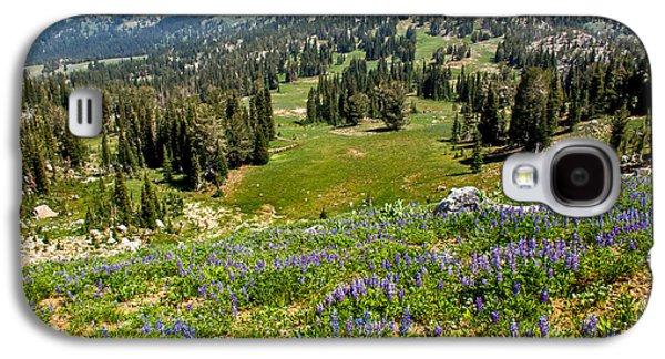 Haybale Galaxy S4 Cases - Alpine Meadow Galaxy S4 Case by Robert Bales