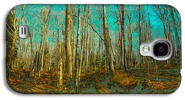 Surreal Landscape Galaxy S4 Cases - Altered Forest Galaxy S4 Case by David Patterson