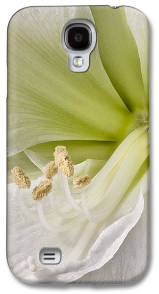 Stigma Galaxy S4 Cases - Amaryllis Galaxy S4 Case by Adam Romanowicz