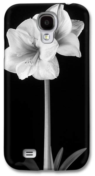Stigma Galaxy S4 Cases - Amaryllis in Black and White Galaxy S4 Case by Adam Romanowicz