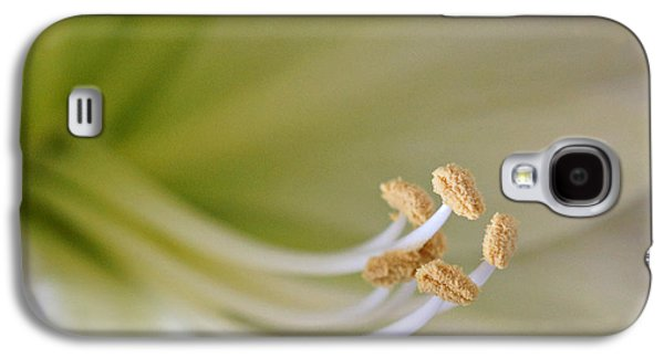 Indiana Flowers Galaxy S4 Cases - Amaryllis  Galaxy S4 Case by Sandy Keeton