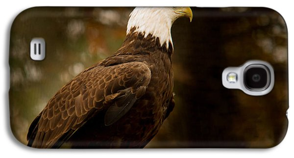 Preditor Galaxy S4 Cases - American Bald Eagle Awaiting Prey Galaxy S4 Case by Douglas Barnett