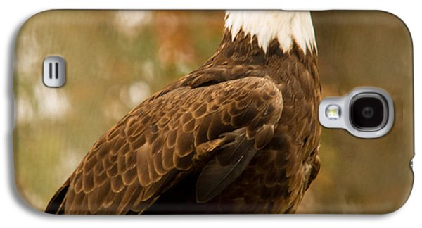 Preditor Galaxy S4 Cases - American Bald Eagle Resting Galaxy S4 Case by Douglas Barnett