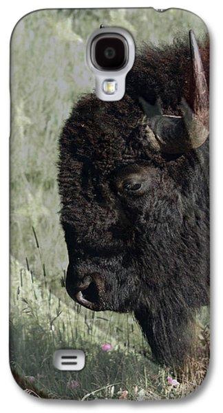 Bison Digital Galaxy S4 Cases - American Bison Galaxy S4 Case by Ernie Echols