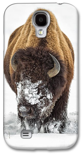 Bison Digital Galaxy S4 Cases - American Bison Galaxy S4 Case by Jerry Fornarotto