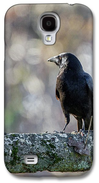 Crows Galaxy S4 Cases - American Crow Galaxy S4 Case by Bill  Wakeley