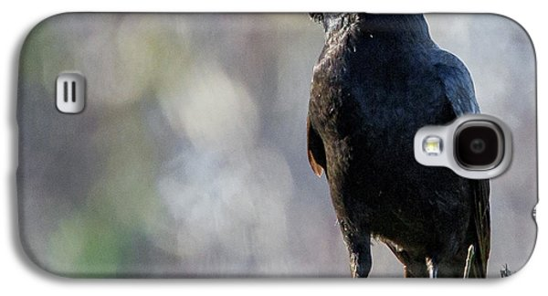 Crows Galaxy S4 Cases - American Crow Square Galaxy S4 Case by Bill  Wakeley