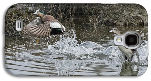 Two Ducks In Flight Photographs Galaxy S4 Cases - American Wigeon Pair Galaxy S4 Case by Anthony Mercieca