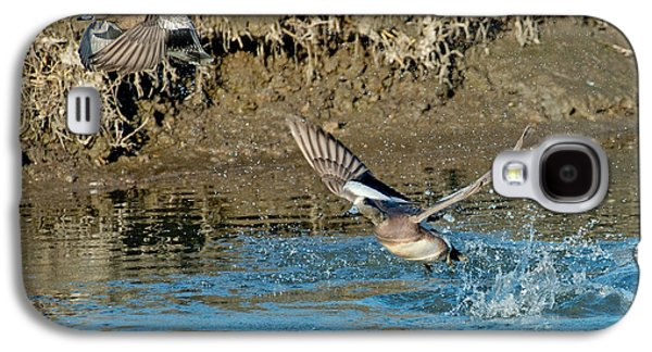Two Ducks In Flight Photographs Galaxy S4 Cases - American Wigeon Pair Taking Galaxy S4 Case by Anthony Mercieca