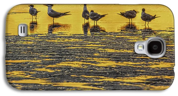 Tern Galaxy S4 Cases - Among Friends Galaxy S4 Case by Marvin Spates