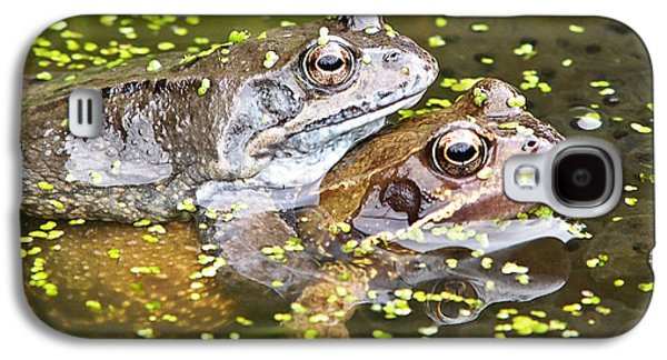 Garden Images Galaxy S4 Cases - Amorous Frogs Galaxy S4 Case by Gill Billington