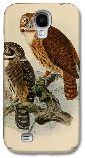 Ornithology Paintings Galaxy S4 Cases - Andean Pygmy Owl Galaxy S4 Case by J G Keulemans