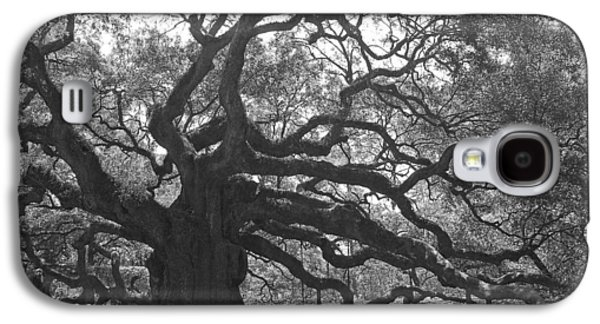 Gnarly Galaxy S4 Cases - Angel Oak II - Black and White Galaxy S4 Case by Suzanne Gaff