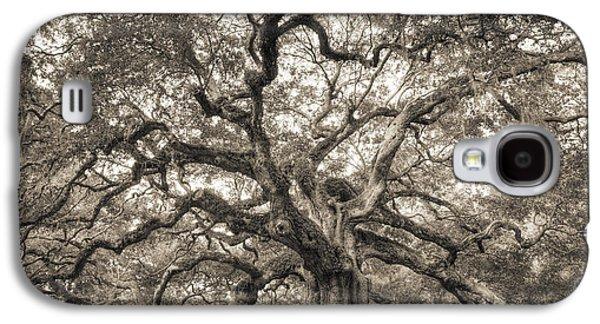 Live Oaks Galaxy S4 Cases - Angel Oak Tree of Life Sepia Galaxy S4 Case by Dustin K Ryan