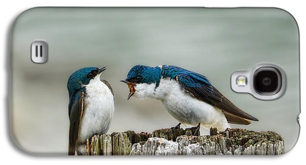 Angry Swallow Galaxy S4 Case by Jai Johnson