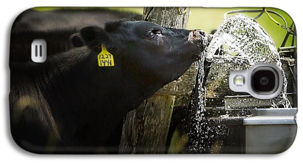 Black Angus Galaxy S4 Cases - Angus drinking water Galaxy S4 Case by Todd Bielby