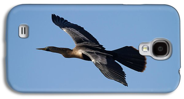 Wildlife Galaxy S4 Cases - Anhinga plane over the blue sky Galaxy S4 Case by Andres Leon