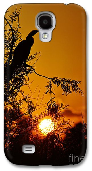 Anhinga Sunset Galaxy S4 Case by Lynda Dawson-Youngclaus