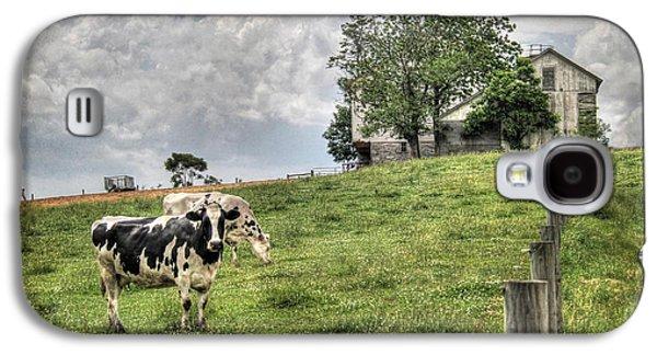 Cow Digital Galaxy S4 Cases - Annville Cows Galaxy S4 Case by Lori Deiter